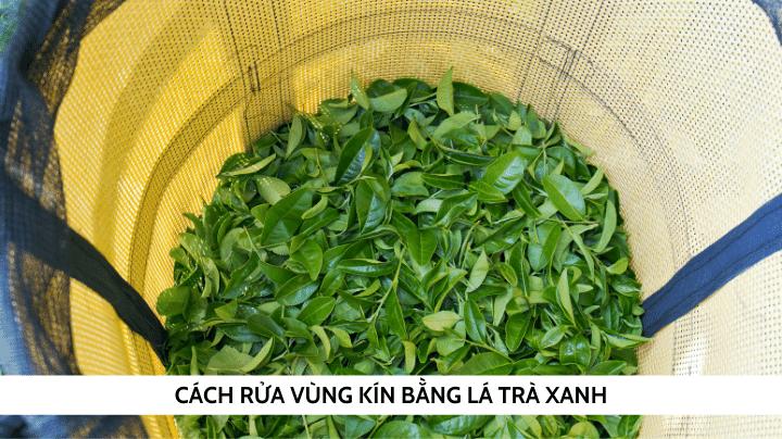 Cách rửa vùng kín bằng lá trà xanh