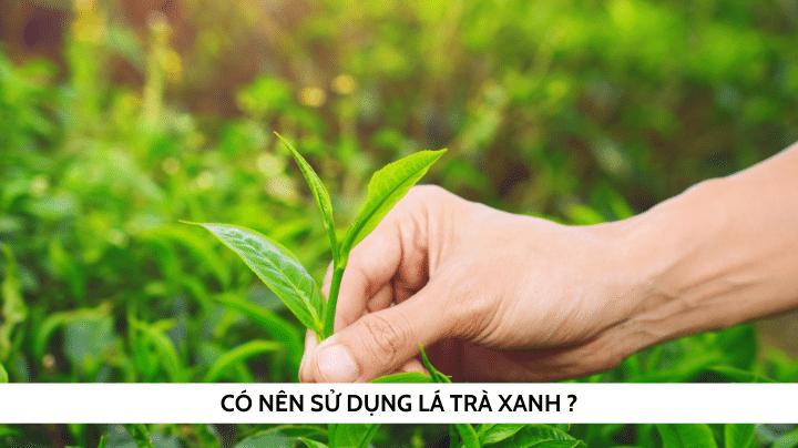 Tác dụng của lá trà xanh đối với vệ sinh vùng kín