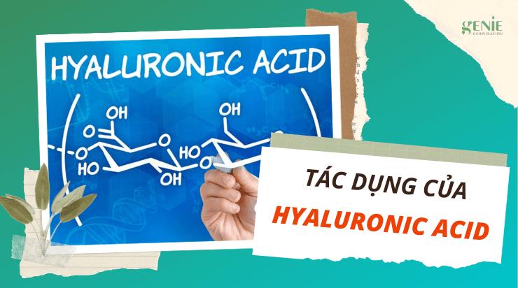 Hyaluronic Acid có tác dụng gì với da và ỨNG DỤNG trong mỹ phẩm