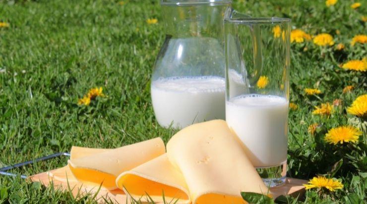 Sữa tươi là cách làm trắng mịn da mặt từ thiên nhiên