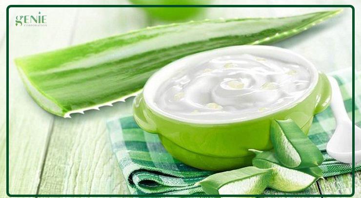 Cách làm mịn da bằng nha đam và sữa chua