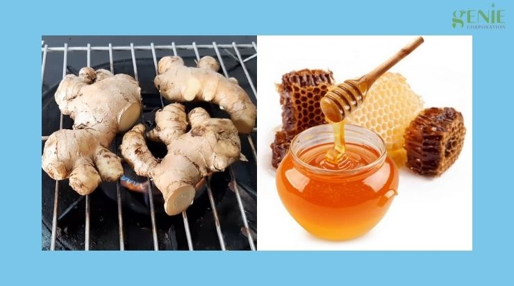 Cách làm gừng nướng mật ong trị ho